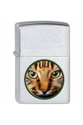 Zippo green eyed cat